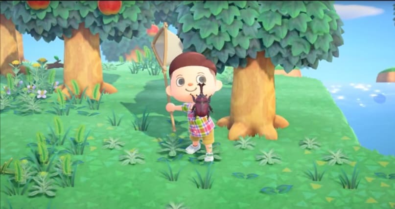 cazando bichos animal crossing