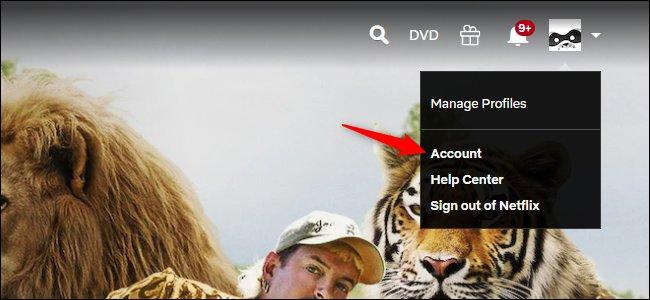 Abrir la configuración de la cuenta de Netflix