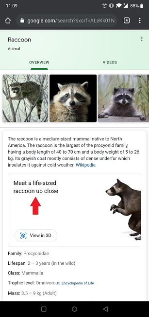 How To Google 3d Objects Search Animal