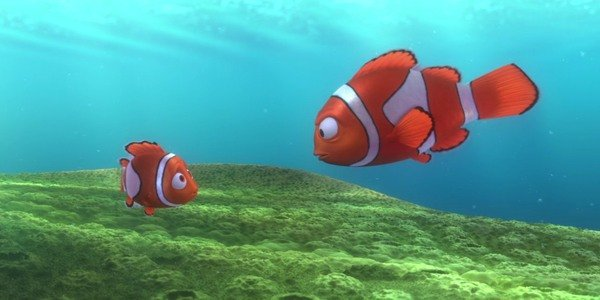 Nemo and Marlin in Finding Nemo