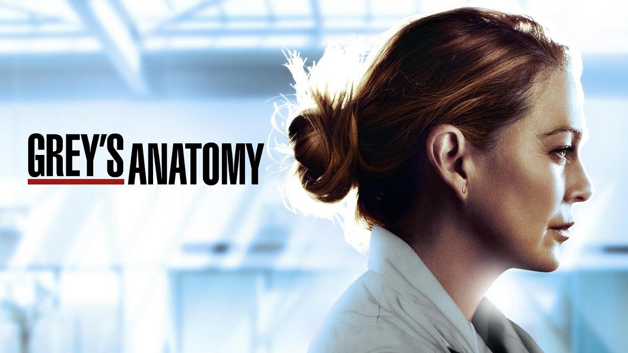 Y una más: Grey's Anatomy tendrá derecho a una temporada 18