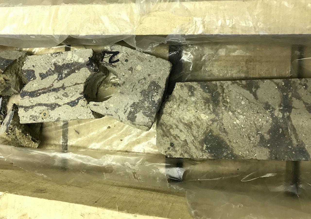 El impacto de un meteorito gigantesco en Ucrania data de hace 65 millones de años